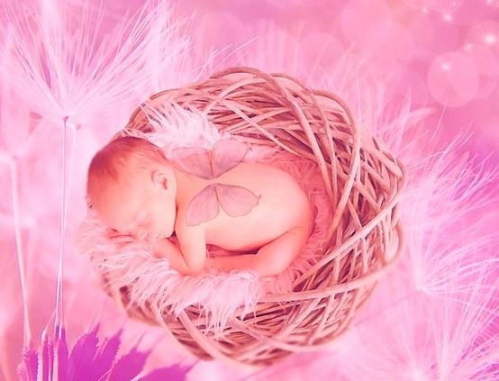 baby-1957429_640