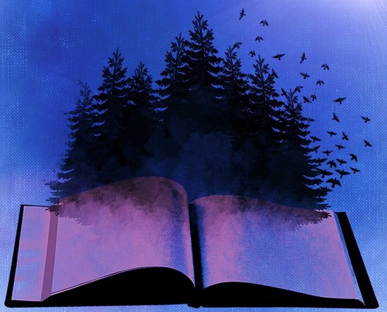book-718633_640